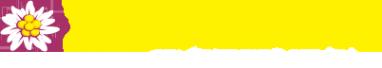 Логотип компании Эдельвейс