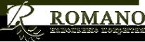 Логотип компании РОМАНО ПАРКЕТ КАЗАНЬ