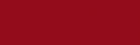 Логотип компании Бурлеск
